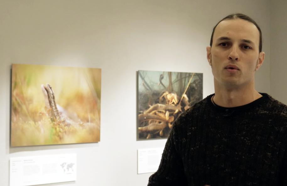 Wildlife Photographer of the Year 2019: intervista a Lorenzo Shoubridge