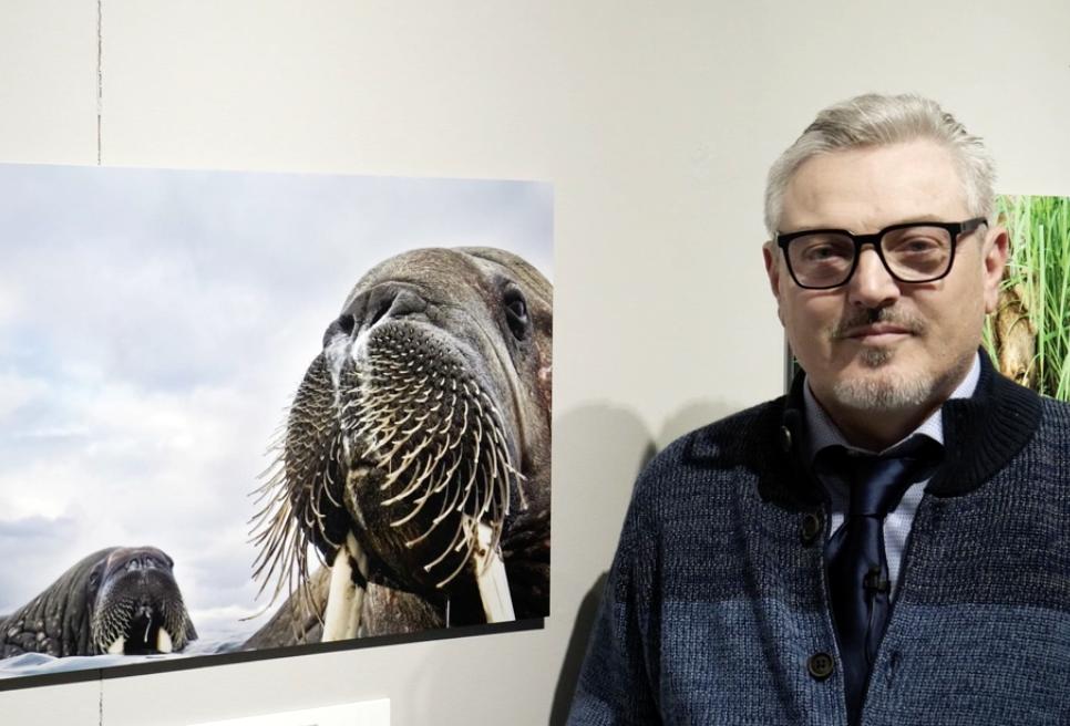 Wildlife Photographer of the Year 2019: intervista a Valter Bernardeschi